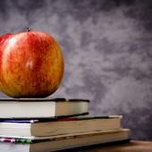 Montessorischule und Waldorfschule